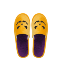 Eventslipper_Pumpkin_Kids