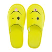 Eventslipper_Smile_2